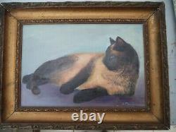 Vintage tableau portrait de chat Siamois/huile carton toilé cadre bois doré